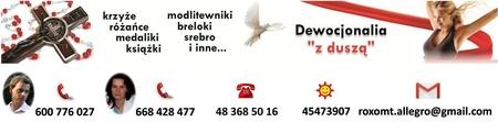 Przypinka znaczek symbol z Duchem Świętym gołębica (2)